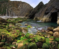 vertorama för kustcovedorset england lulworth Arkivbilder