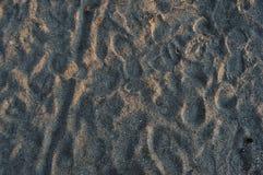 Vertrappeld zand in daling met fietssporen stock afbeeldingen