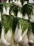 Verts de Bok Choy Photos libres de droits
