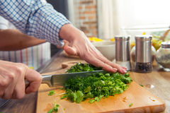 Verts de salade de coupe de femme Images libres de droits