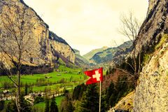 Verts suisses photo stock