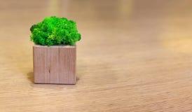 Verts sur une décoration en bois de table image stock