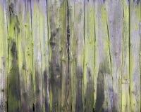 Veru old mossy green vertical planks on side or door of farmer`s barn. Veru old mossy green grungy cracked vertical planks on side or door of farmer`s barn Stock Photos