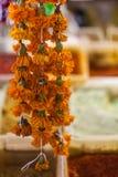 Vervalsing of Imeritinsky-de goudsbloemen van saffraanbloemen royalty-vrije stock foto