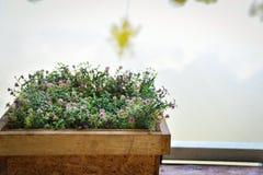 Vervalste bloem en installatie stock afbeeldingen
