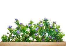 Vervalste bloem in mand Royalty-vrije Stock Foto's