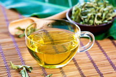 Verveine Tea or Verbena Tea Royalty Free Stock Photo