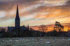 Övervintra den frostiga staden för den soluppgånglandskapSalisbury domkyrkan i Engl Royaltyfri Bild