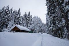 ?vervintra sagan, t?ckte tungt sn?fall tr?den och husen i bergbyn Efter stormen alpin royaltyfri foto
