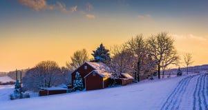 Övervintra sikten av en ladugård på ett snö täckt lantgårdfält på solnedgången, in Arkivfoton