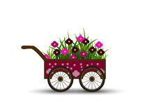 Vervoer met Bloemen en Gras op de Witte Achtergrond wordt geïsoleerd die Royalty-vrije Stock Foto