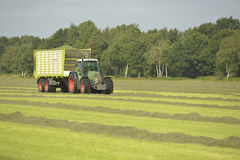 Vervoer van gesneden gras met groene tractor en grasaanhangwagen Stock Foto