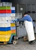 Vervoerde de dozen van vissen Royalty-vrije Stock Afbeeldingen