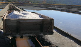 Vervoerkarretje met zout Stock Foto's