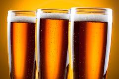 Vervollkommnen Sie gekühltes Bier Stockfoto