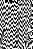 Vervormde zwart-witte lijnen Stock Foto