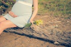 Verwachting van het de geboortekind van het Wildflowers de zwangere moederschap Stock Foto