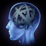 Verwarde in verwarring gebrachte menselijke hersenen Royalty-vrije Stock Fotografie