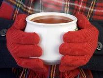 Verwarmende kop van soep Stock Foto