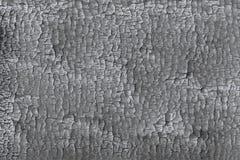 Verwelkende Beschaffenheit des gebrannten schwarzen hölzernen Klotzes nach einem Waldbrand stock abbildung