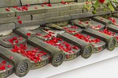 Verwelkte bloem op dak stock afbeelding