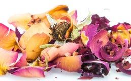 Verwelktes Rosafarbenes und Blumenblätter auf weißem Hintergrund stockfoto