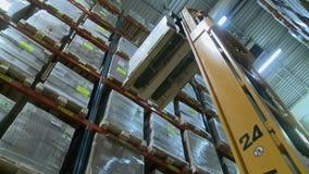 Verwerkende pakhuis Mening van de vorkheftruckwerken stock videobeelden