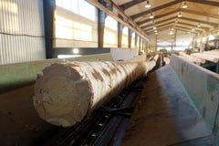 Verwerking van hout bij de zaagmolen stock afbeelding