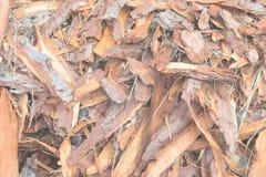Verwerp van de timmerhoutindustrie royalty-vrije stock foto's