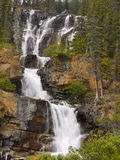Verwicklung fällt Jasper National Park Lizenzfreie Stockbilder