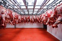 Verwijderd van een halve rundvleesbrokken verse op een rij gehangen en geschikt in een grote koelkast in de industrie van het koe stock foto