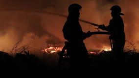 Verwijdering van een brand in het hout bij nacht stock videobeelden