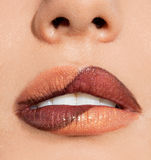 Verwijfde lippen Stock Foto
