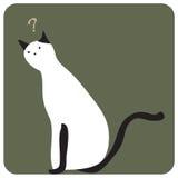 Verwirren Sie Katze Lizenzfreie Stockfotos