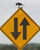 Verwirrender Vogel des Zeichens Lizenzfreie Stockfotografie