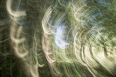 Verwischen Sie grünen Park der Natur mit bokeh Sonnenlicht-Zusammenfassungshintergrund Kopieren Sie Raum des Reiseabenteuers und  Lizenzfreie Stockfotos