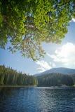 Verwischen Sie Hintergrundlandschaft mit einem See und einer Kiefernniederlassung Karpary Stockfotografie