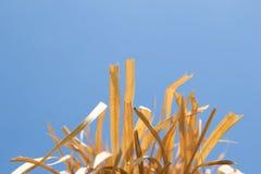 Verwischt vom Heu und vom blauen Himmel Lizenzfreie Stockfotografie