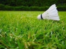 Verwischt von den Federbällen auf grünem Rasen lizenzfreies stockfoto