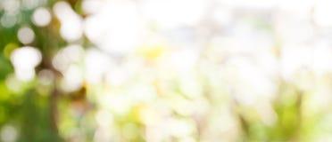 Verwischte goldenes Himmelslicht abstrakten Natur bokeh Hintergrundes Hintergrund von der Natur Stockfotografie