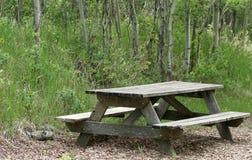 Verwitterte Picknick-Tabelle in einem Wald Lizenzfreie Stockfotografie