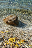 Verwitterter Kalkstein auf der Mittelmeerküste Lizenzfreie Stockbilder