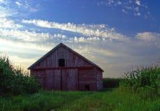 Verwitterter roter Stall in einem Getreidefeld Stockbilder