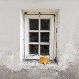 Verwittertes Fenster mit einzelnem Ahornblatt Lizenzfreie Stockfotografie