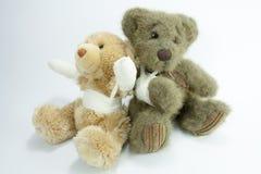 Verwond Ted en ted royalty-vrije stock foto's