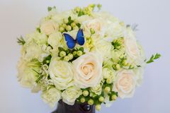 One blue butterfly on white roses. Wedding bouquet. A very beautiful blue butterfly sits on a white and yellow flowers Stock Image