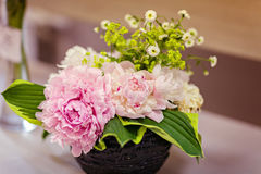 Very beautiful pink peonies made in a bouquet Royalty Free Stock Photos