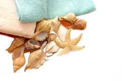 Very beautiful seashells on towel Royalty Free Stock Image