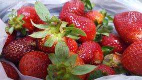 Very beautiful Strawberry royalty free stock image