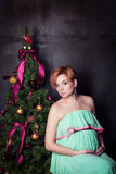 Very beautiful young pregnant woman Royalty Free Stock Photo